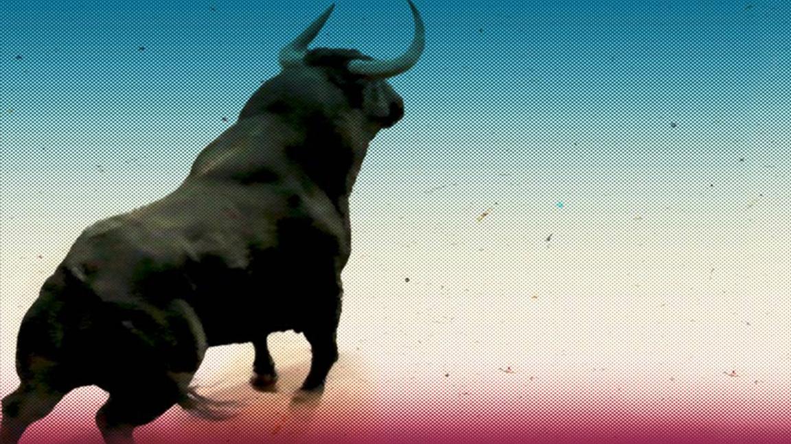 bull market on 360 vision
